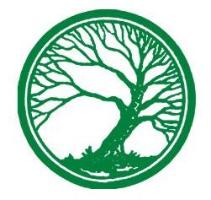 ALSER FOREST SRL Logo