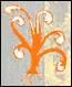 Mouris Hout BV Logo