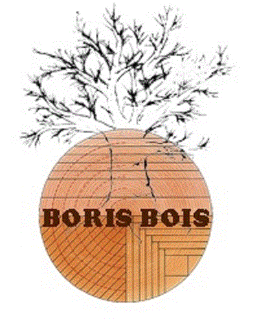 Boris Bois SA Forest managers - forest harvesters - loggers