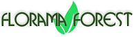 FLORAMA FOREST SRL Forest managers - forest harvesters - loggers