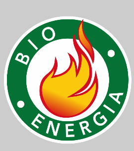 Energy Production From Wood Or Bio-fuels - Bioenergy Company LLC