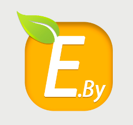 Energy Production From Wood Or Biofuels - «Energy By» LLC