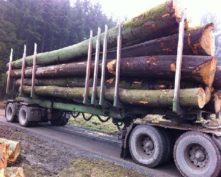 VH-Holz GmbH