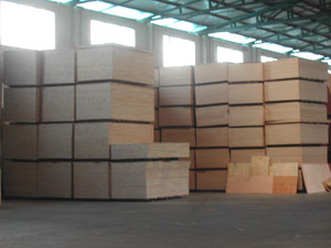 LINYI XINNUO IMP&EXP.CO., LTD.