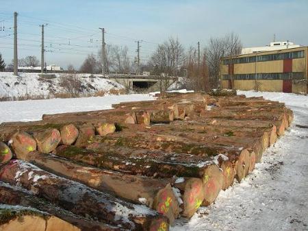 Albert Feuerstein Holzhandel Import_Export