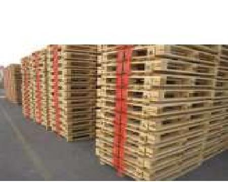 ELGALI PALLETS LTD - Wood importer