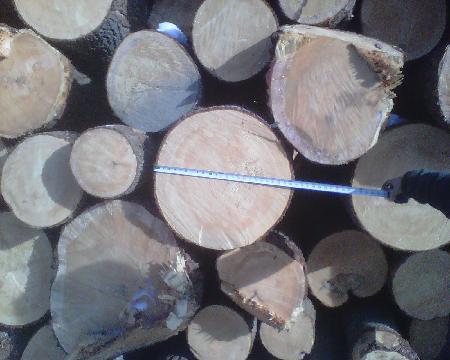 Hiram Wood