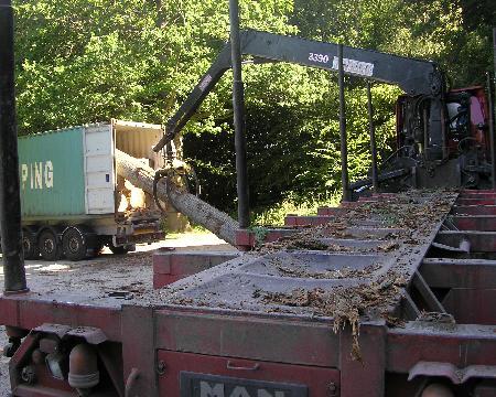 Maine Sawmills Asia