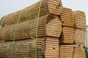 Mayer Holzhandel GmbH
