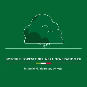 BOSCHI E FORESTE NEL NEXT GENERATION EU