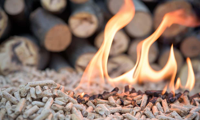 Lo sporco piccolo segreto dietro il pellet di legno