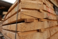 France: Oak prices fall at the beginning of September