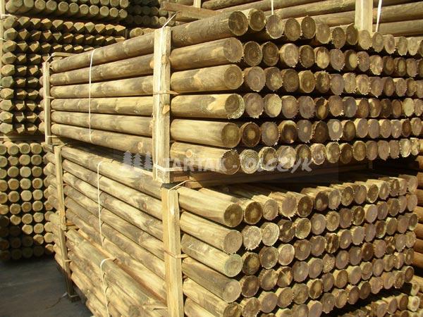 红松木材原木图片