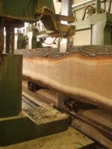 Woodworking - Treatment Services Italy - Sawing Services, Italy
