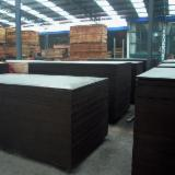 Buy Or Sell  Film Faced Plywood Brown Film CE - high quality film faced plywood
