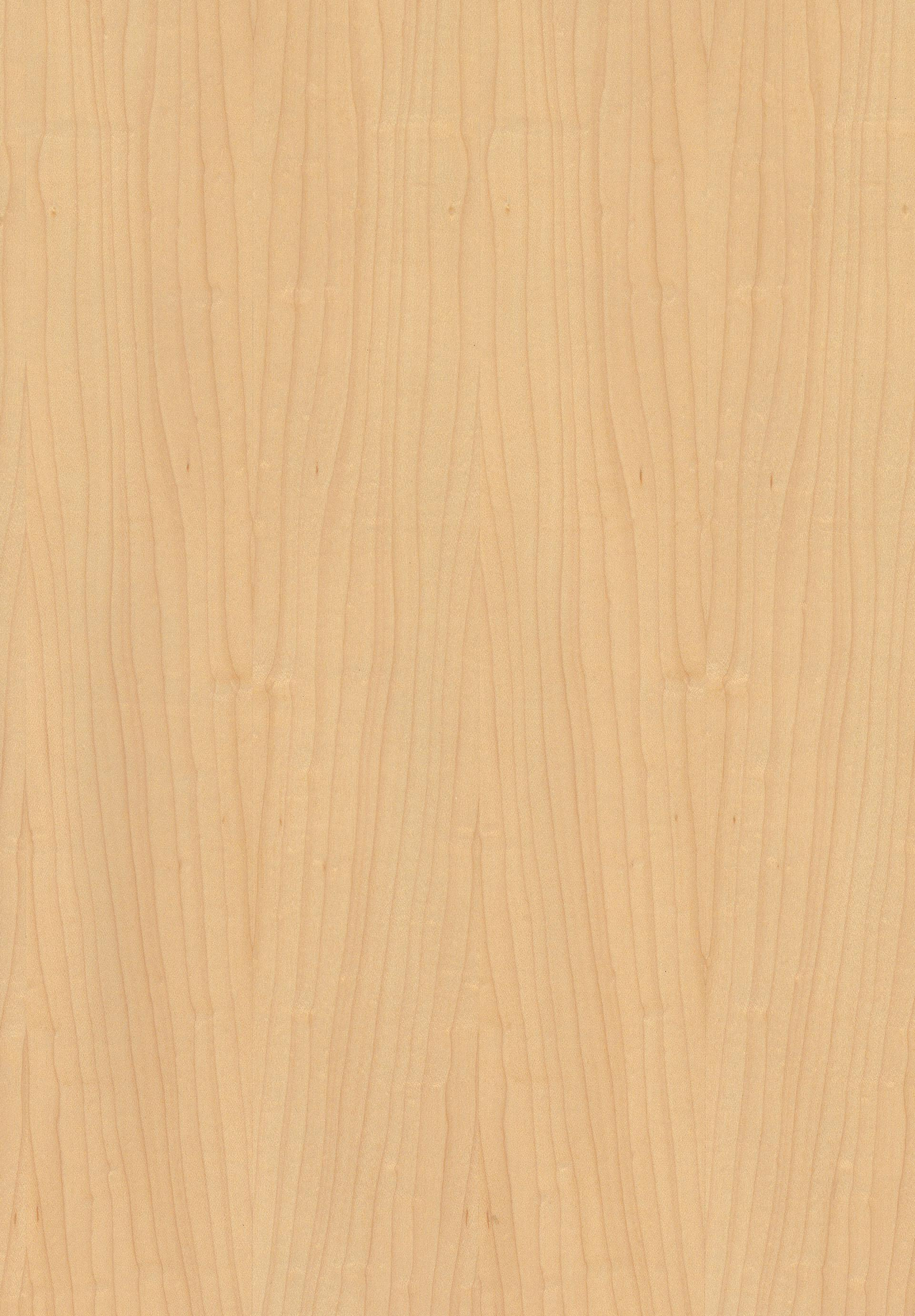 Fancy Decorative Plywood Maple American Hard Maple