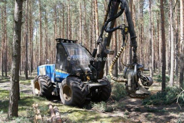 Mechanized felling