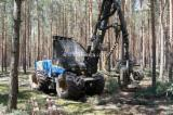 Forest Services - Mechanized felling, Germany