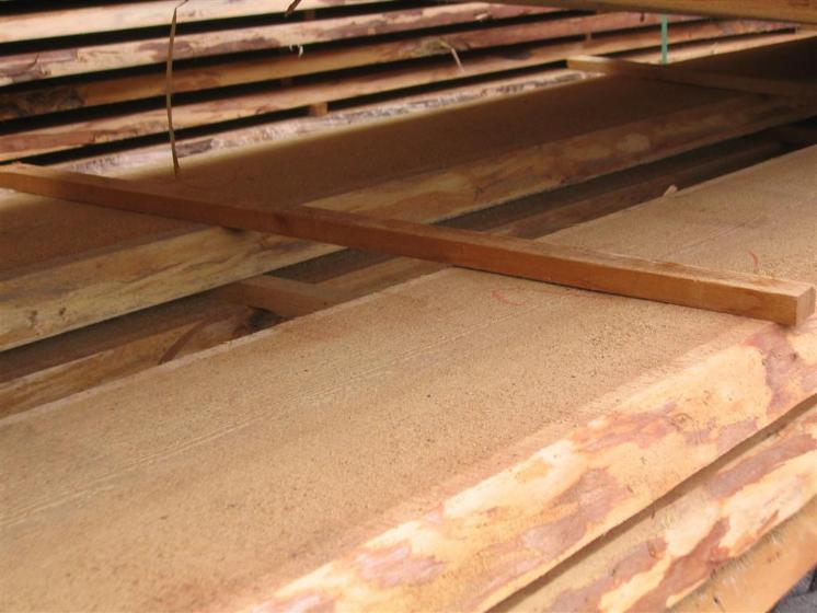 Siberian-Larch-Loose-25--32--38--50--63--75--80--90-mm-from-Russia