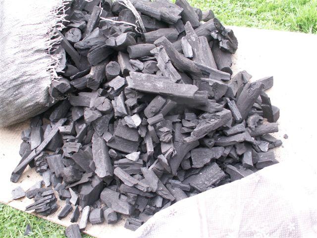 Prezzo carbone - narkive