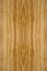 Sliced Veneer For Sale Italy - Natural Veneer, Olive, Tranciato fiammato e rigato