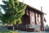 Wood Houses - Precut Timber Framing For Sale - Round log house