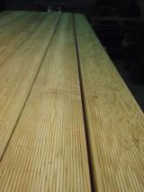 Softwood  Logs FSC - Offering Siberian Larch