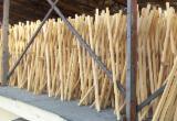 Puertas, Ventanas, Escaleras - Maderas duras (Europa, Norteamérica), cozi unelte / tools wooden handle, Haya (Europa)
