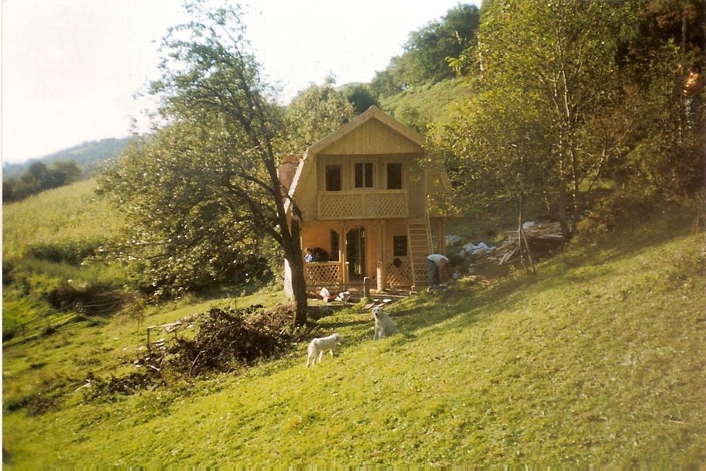 Casa di tronchi squadrati abete picea abies legni for Case di tronchi ranch