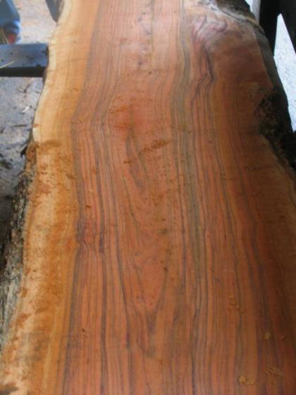 Ulivo tavole - Vendita tavole di legno ...