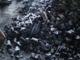 Firewood, Pellets And Residues Beech - Beech Wood Charcoal -- mm