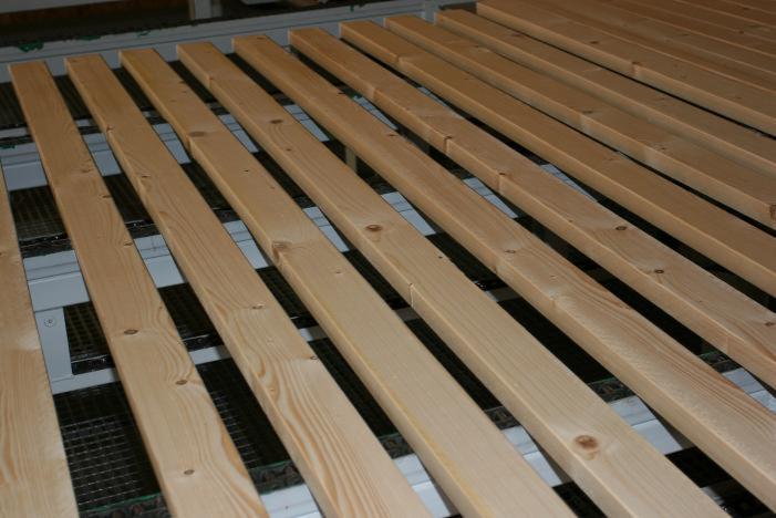 Fir/Spruce/Pine