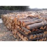 Buy Or Sell  Firewood Woodlogs Cleaved Romania - Selling Beech for fire