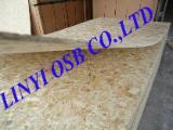 Holzwerkstoffen China - OSB Platten, 6-30 mm