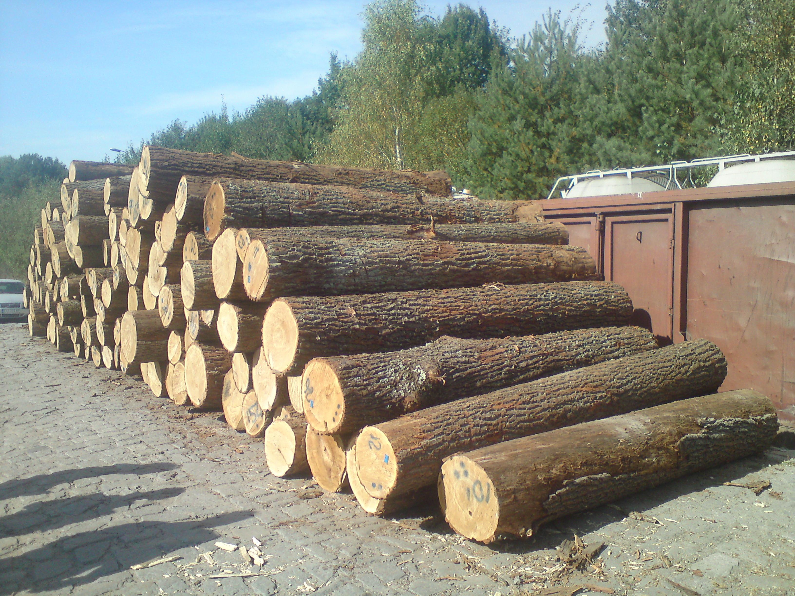 Oak Wood Logs ~ Oak round wood