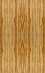 Engineered Wood Components Linings For Sale - Coated veneer Olive
