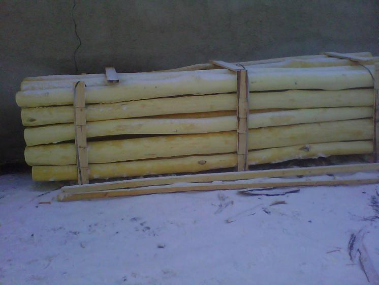Vend piquets tuteurs acacia roumanie - Tuteur bois brico depot ...