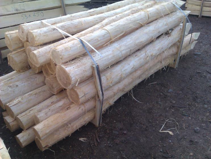 Vend piquets tuteurs acacia serbie - Tuteur bois brico depot ...