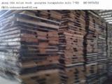 Hardwood  Sawn Timber - Lumber - Planed Timber Birch Europe - Birch timber, Square edged,kiln dried