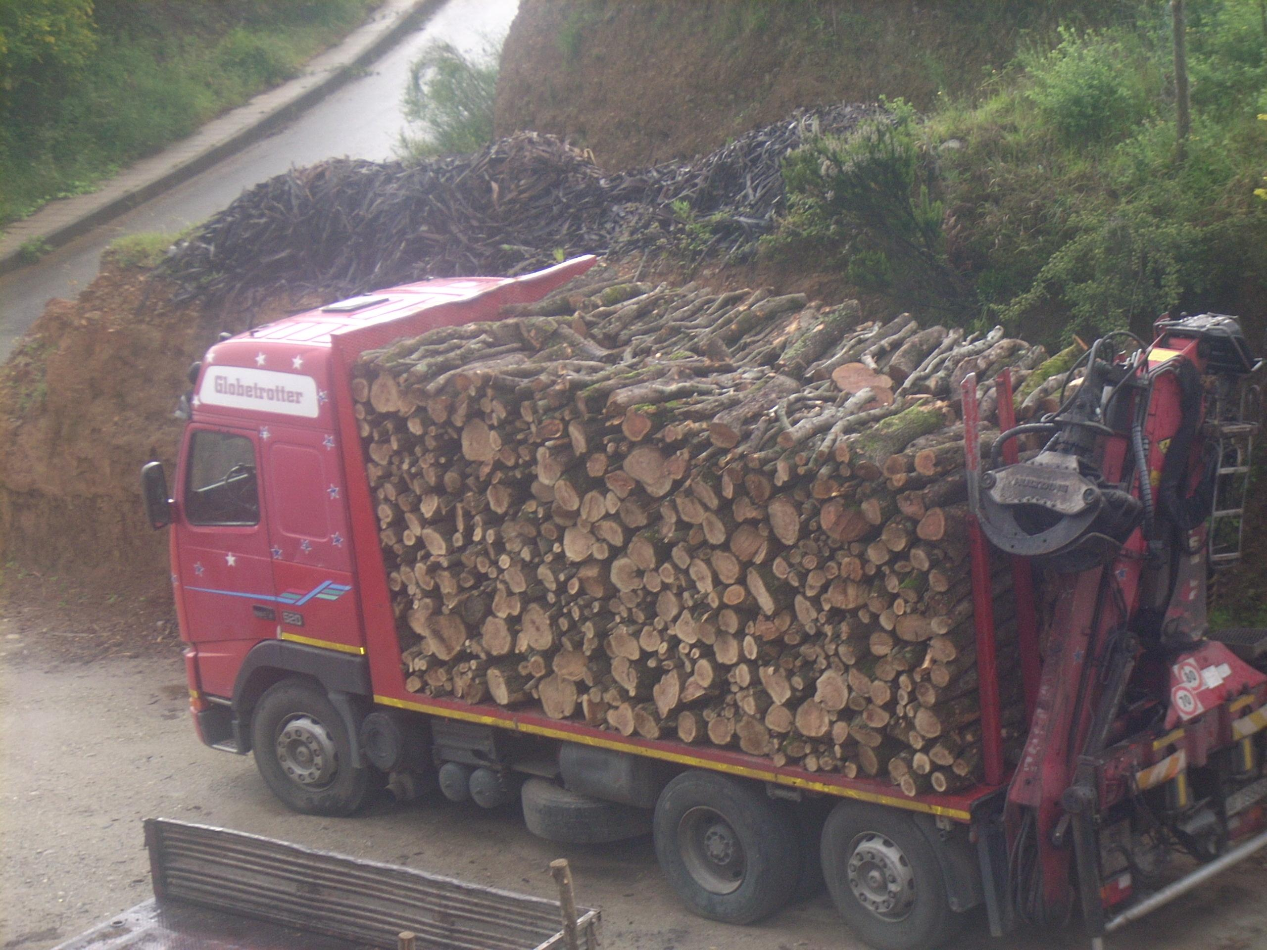 Aerazione forzata legna da ardere ulivo prezzi for Legna da ardere prezzi