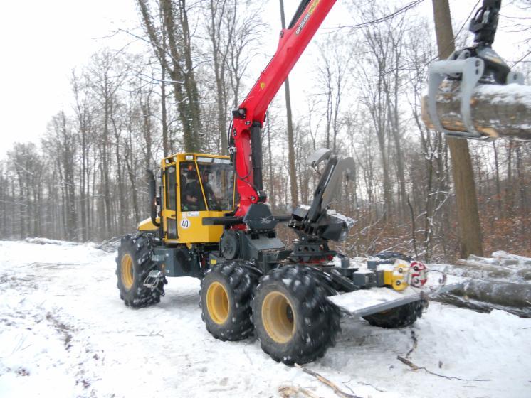 motormanueller Holzeinschlag und Rückearbeiten