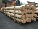 Hardwood  Logs  Cylindrical Trimmed Round Wood Acacia For Sale - Stakes, Acacia