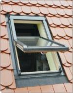 Hardwood-%28Temperate%29--Beech-%28Europe%29--Windows