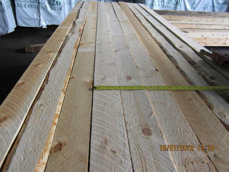 Pine (Pinus sylvestris)