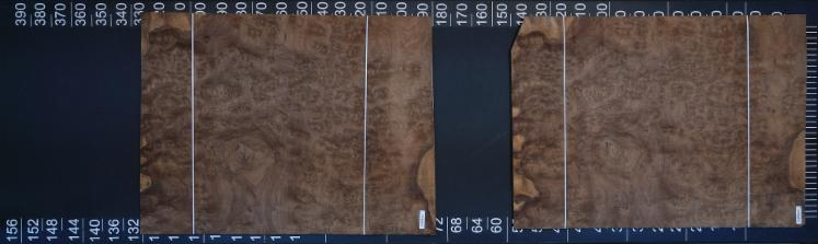 Natural Veneer, Walnut (American Black)
