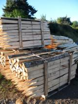 Hardwood  Logs  Cylindrical Trimmed Round Wood Acacia -  cylindrical trimmed round wood, Acacia