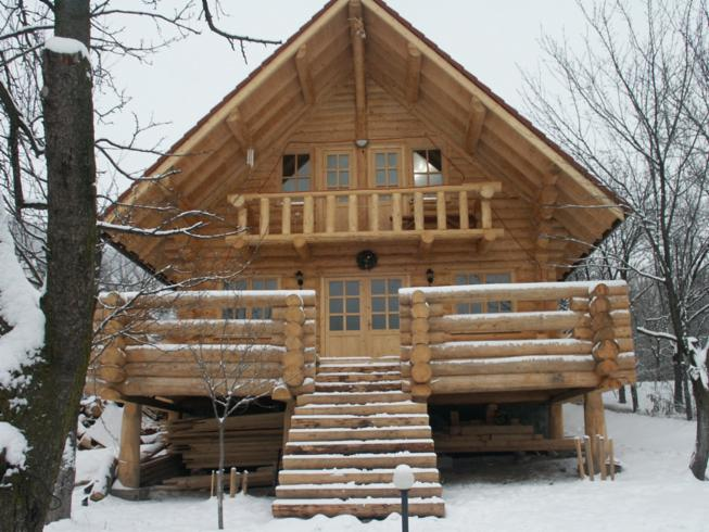 Canadian log house