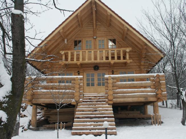 Preventivo per case di tronchi for Planimetrie uniche per la casa di tronchi