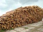 industrial logs