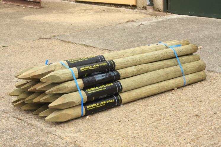 poles, All coniferous